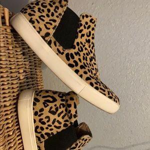 Size 7 leopards